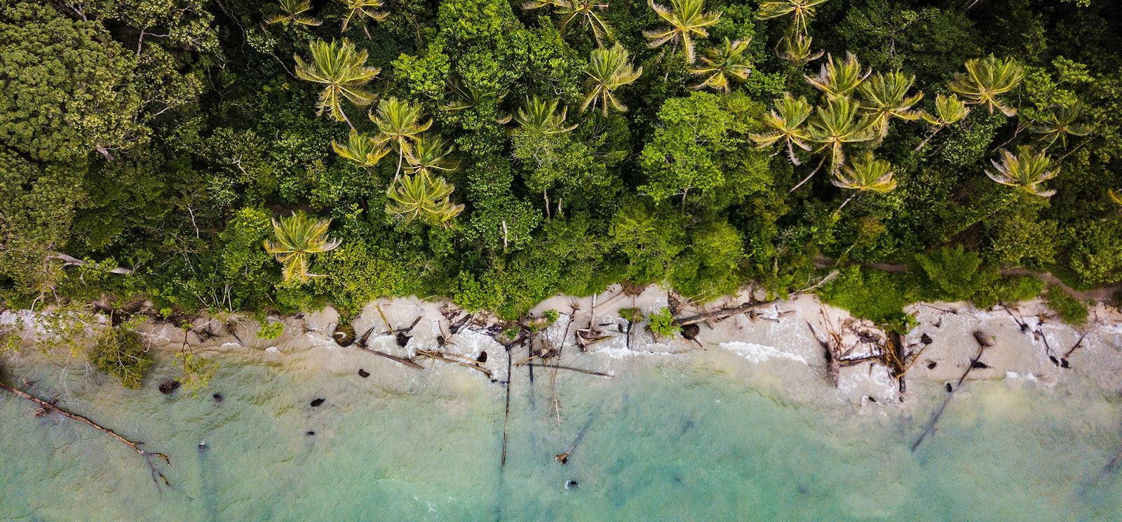 Caribbean shoreline from above