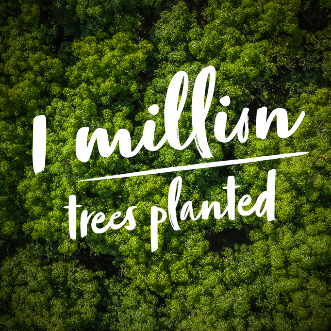 1 Million Trees planted